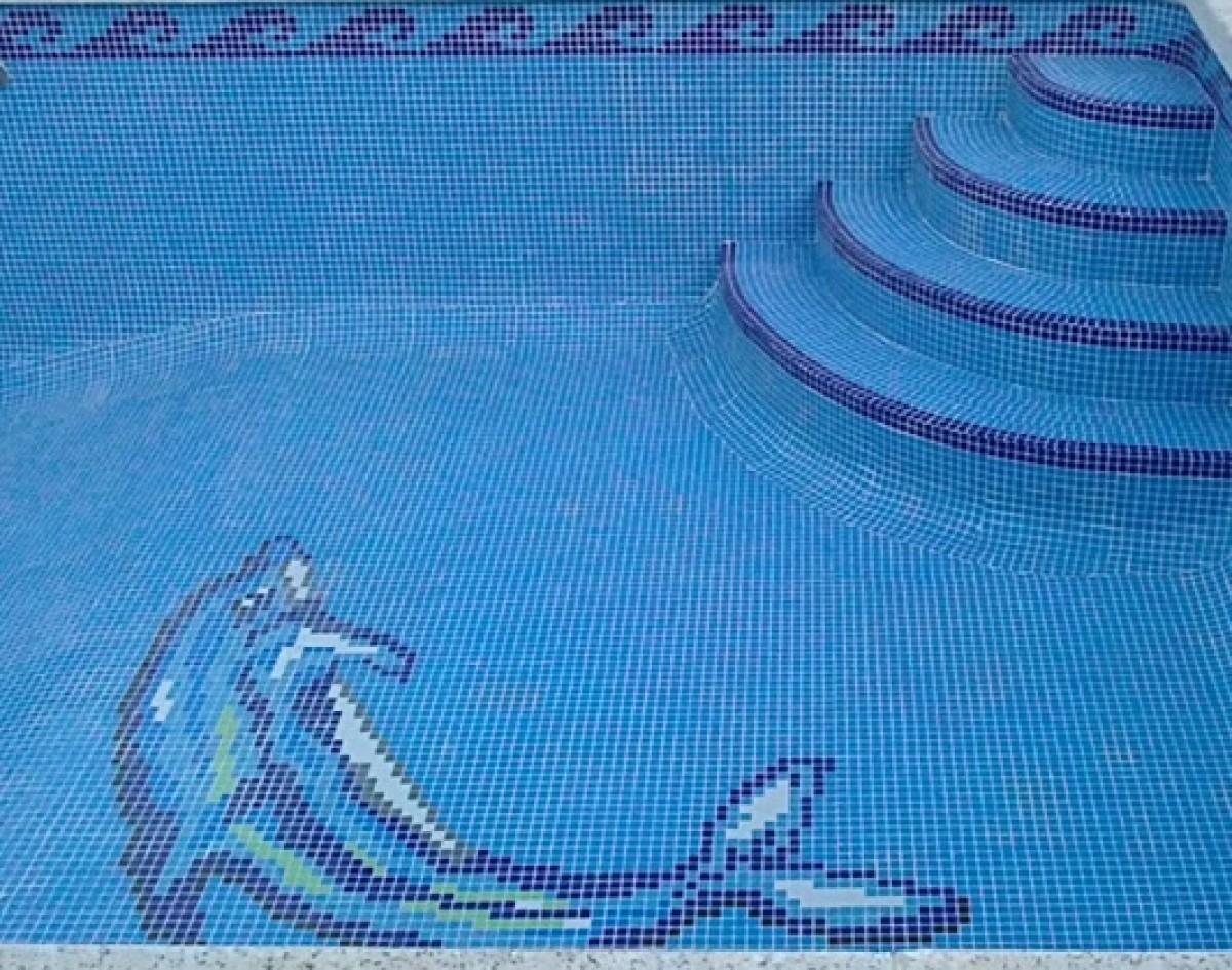 Piscina Delfín